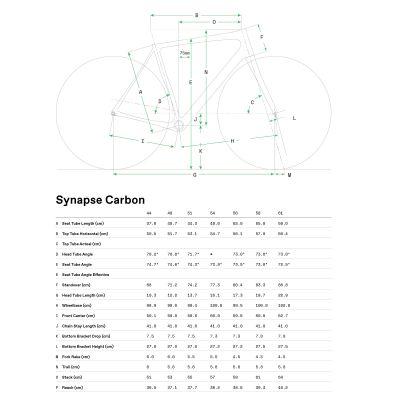 Synapse Carbon 105 - 2021