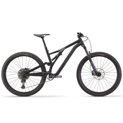 Stumpjumper Alloy