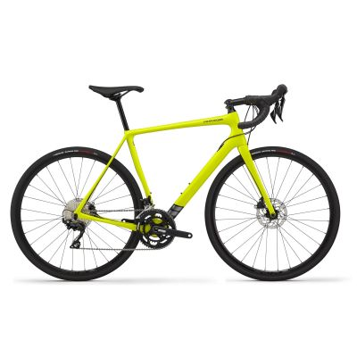 Synapse Carbon Disc 105 - 2020